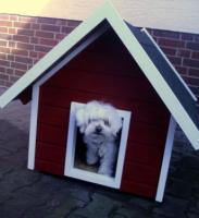 Luxus Hundehutte Im Schwedenstil Neu In Verl Von Privat Hundehutte