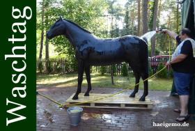 Foto 6 MEGA TEUER DECO HORSE … EGAL SEH SIE DIR AN DAS KOSTE NIX ...