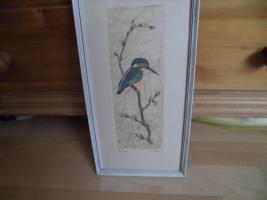 Maler Friche, Eisvogel, Original-Bild