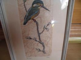 Foto 7 Maler Friche, Eisvogel, Original-Bild