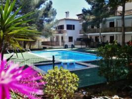 Foto 13 Mallorca, Cala Santanyi, Kleine hübsche Casita bis 4 Personen