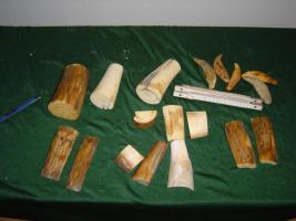 Mammutelfenbein, Mammoth Ivory Mammutstoßzahn, Mammut Rinde blau Fossilien Mammoth Ivory