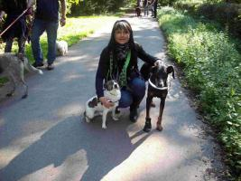 Manuelas mobile Hundeschule