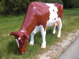 Melk-Kuh ''Rosi''
