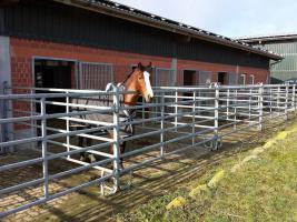 Foto 6 Mobil zerlegbare Pferde Außenboxen 6x3m ab 2.599, - €