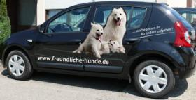 Foto 4 Mobile Hundeschule Müller