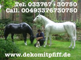 Foto 3 Möchtest Du einen Deko Pferd selbst bemalen ?