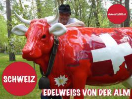 Montreux - Deko Kuh lebensgross oder Deko Pferd lebensgross ...