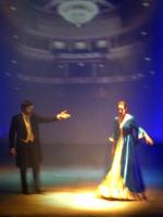 Foto 6 Musicaldinner - Das Original ''Diamonds of Musical''  19.01.  Altmarkhotel Schwarzer Adler - Stendal
