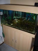 Foto 5 NOTFALL: Aquarium 200l komplett mit Zubehör