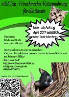 Neu – mEATzie das Feinschmecker-Katzenfutter