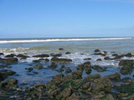 Foto 5 Nordsee-Urlaub im hol. 4* Ferienpark direkt am Meer