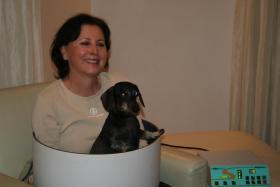 Foto 5 Ob alt ob jung, so halten Sie Ihren Hund in Schwung
