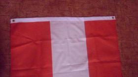 Foto 2 Österreich Flagge