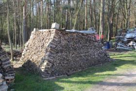 Ofen-Brennholz: 22m³ Haufen, gemischt 20-25cm Länge
