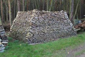 Foto 2 Ofen-Brennholz: 22m³ Haufen, gemischt 20-25cm Länge