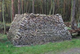 Foto 4 Ofen-Brennholz: 22m³ Haufen, gemischt 20-25cm Länge