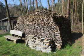 Ofen-Brennholz: gemischt 20-25cm Länge, 18m³ Haufen