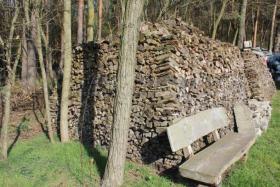 Foto 2 Ofen-Brennholz: gemischt 20-25cm Länge, 18m³ Haufen
