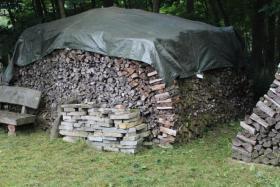 Foto 2 Ofen-Brennholz gemischt 20-25cm Länge, 18m³ Haufen