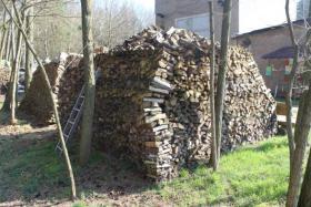 Foto 4 Ofen-Brennholz gemischt 20-25cm Länge, 18m³ Haufen