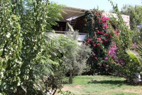 Oleander-Villa im Mandarinenhain