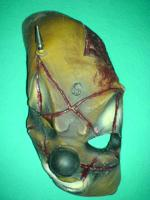 Orig. SlipKnoT Shawn Crahan clown mask
