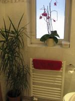 Duschbad- Handtuchtrockner unterm Fenster