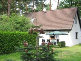 Foto 6 Ostsee-Urlaub mit Hund im Ferienhaus auf Waldgrundstück in Wieck a. Darß