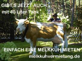 Foto 3 Party Deko Melkkuh lebensgross  für den Silvesterabend mieten...