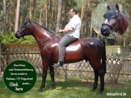 Pferd wie Pferd möchst Du kaufen ... ach so Du meinst ein Deco Horse - Modell ...