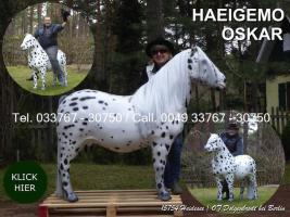 Foto 2 Pferd wie Pferd möchst Du kaufen ... ach so Du meinst ein Deco Horse - Modell ...