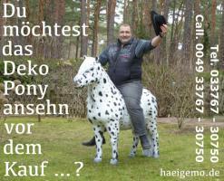 Foto 3 Pferd wie Pferd möchst Du kaufen ... ach so Du meinst ein Deco Horse - Modell ...