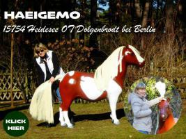 Foto 6 Pferd wie Pferd möchst Du kaufen ... ach so Du meinst ein Deco Horse - Modell ...