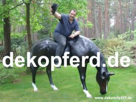 Pferd / Horeses / Deco / Pferde