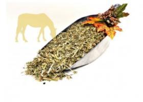 Pferde Kräutermüsli getreidefrei ''medium'' 10 KG, Pony & Esel