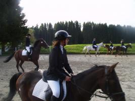 Pferde-Nanny sucht Reitbeteiligung