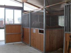 Foto 7 Pferde Stallboxen inkl. Holzfüllung und Schiebetür