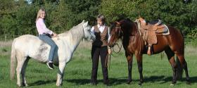 Pferde, Ponys und mehr auf Soni's kleiner Farm - Ranchreiten Reiturlaub & Einzelstunden