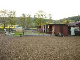 Foto 4 Pferdeboxen mit großen Paddocks in toller Natur