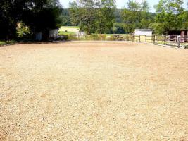 Foto 6 Pferdeboxen mit großen Paddocks in toller Natur