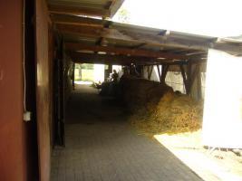 Foto 9 Pferdeboxen mit großen Paddocks in toller Natur