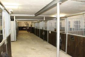 Foto 3 Pferdepensionsstall  / Altersuhesitz für Pferde