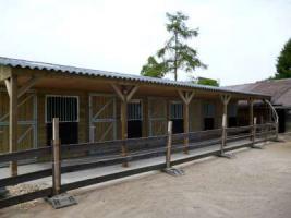 Foto 8 Pferdestallen gut und gunstig !!