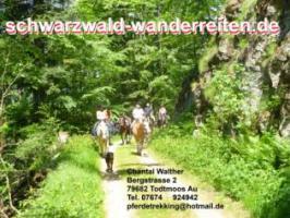 Foto 3 Pferdetrekking, Wanderreiten, Reitferien, Mehrtagestzouren für Erwachsene