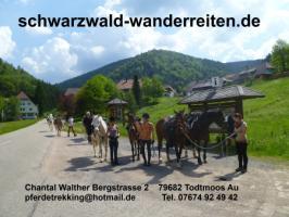 Foto 6 Pferdetrekking, Wanderreiten, Reitferien, Mehrtagestzouren für Erwachsene