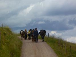 Foto 10 Pferdetrekking, Wanderreiten, Reitferien, Mehrtagestzouren für Erwachsene