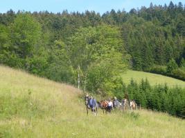 Foto 11 Pferdetrekking, Wanderreiten, Reitferien, Mehrtagestzouren für Erwachsene