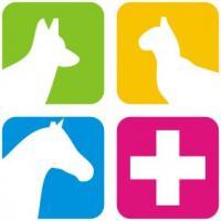 Physiotherapie und Heilkunde am Tier Natascha Dahm