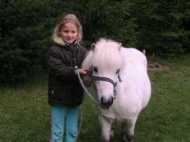 Ponywallach